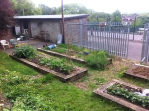 photo of allotments