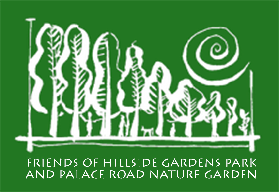 Friends of Hillside Gardens Park         And Palace Road Nature Garden